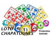 Loto Chapatounes